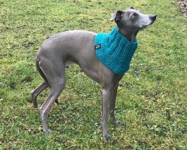 Dog Neckwarmer / Dog Scarf