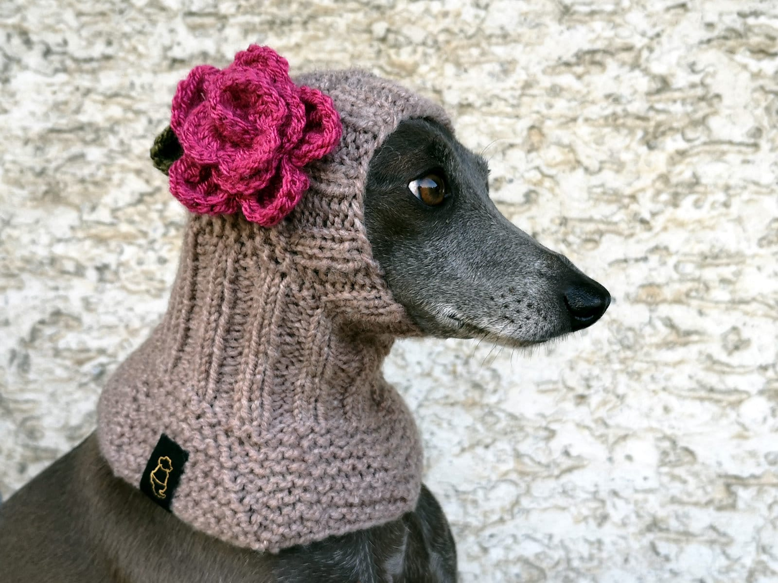 Dog Hat with a Flower  Italian Greyhound Hat  Whippet Hat  Hand Knit Dog Hat  Dog Neckwarmer  Hat with a Crochet Flower