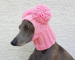 Pom Pom Dog Hat