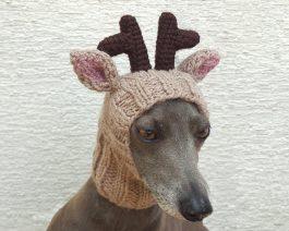 Reindeer Dog Hat