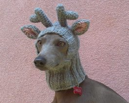 Reindeer Dog Hat with a Tassel