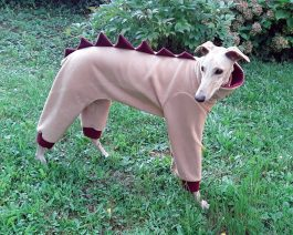 Greyhound Fleece Pajamas / Dinosaur Dog Pajamas
