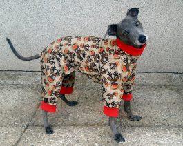 Italian Greyhound Sweat Pajamas