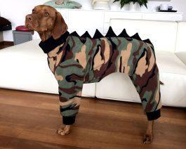 Dog Clothing / Vizsla Pajamas / Dinosaur Dog Costume