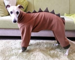 Whippet Fleece Pajamas / Dinosaur Dog Pajamas